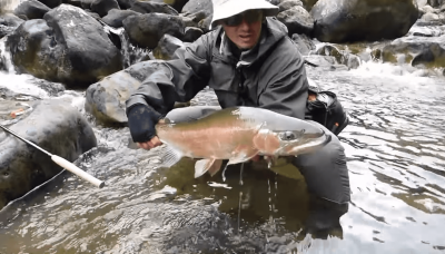 Huge Jurassic Rainbow Trout VS. ultra light tenkara cane